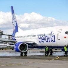 «Белавиа» запустила мобильное приложение для покупки билетов и регистрации на рейсы