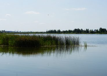 Могилевчане раскрыли тайну названия «Святого» озера (видео)