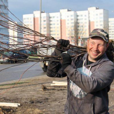 Городской субботник в Могилеве состоится 23 октября