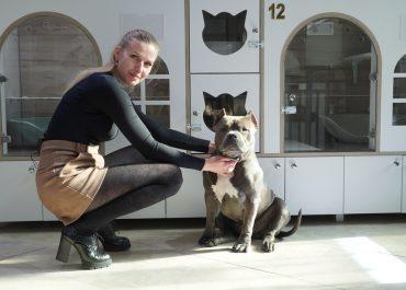 Стилисты и зоопсихологи: репортаж из салона для домашних животных